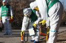 Comment le centre nucléaire de Cadarache réagirait en cas de séisme