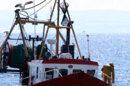 Marpol 6 dans le collimateur des armateurs de France