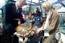 Réception princière à Monaco pour des tortues maliennes
