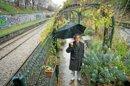 «Les Jardiniers du bitume»: pour un jardinage social